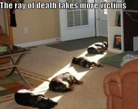 the-ray-of-death-takes-more-victims.